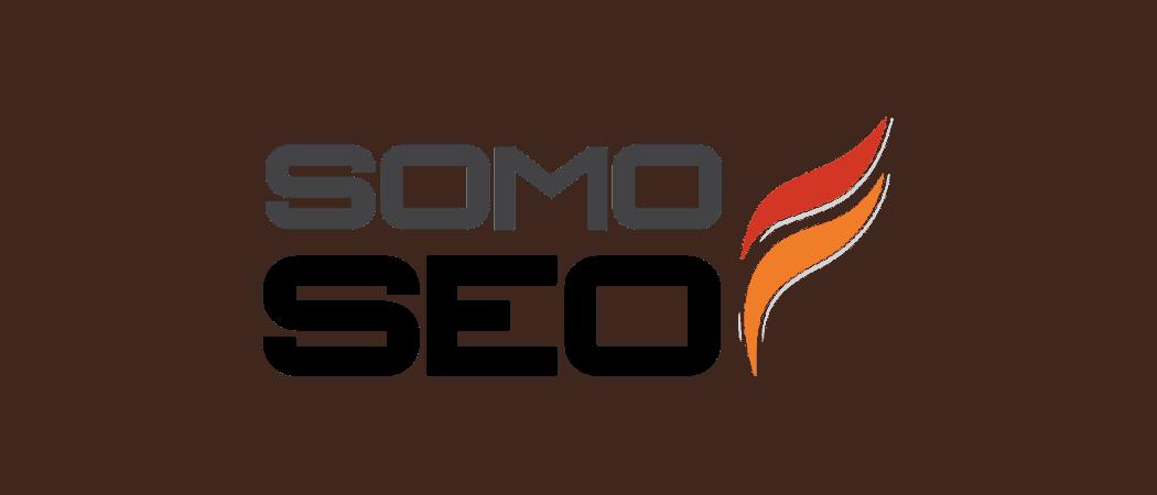 SomoSEO website portfolio